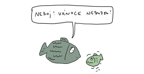 1429572_vanoce