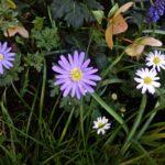 4 důvody, proč nesnášet jaro
