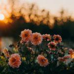 9 věcí, které dělám pro mír v duši